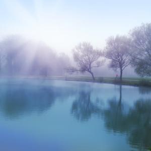 landschap met water en bomen in de mist