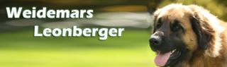 Weidemars Leonberger